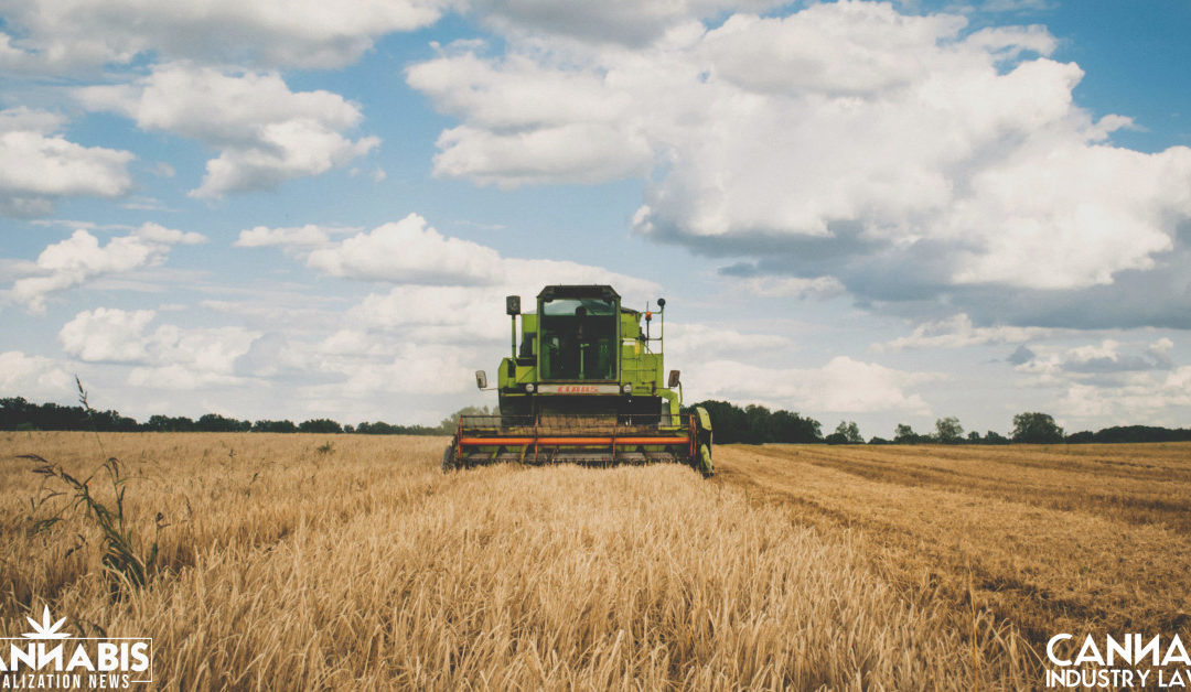 How Do You Perfect a Security Interest in Agriculture?